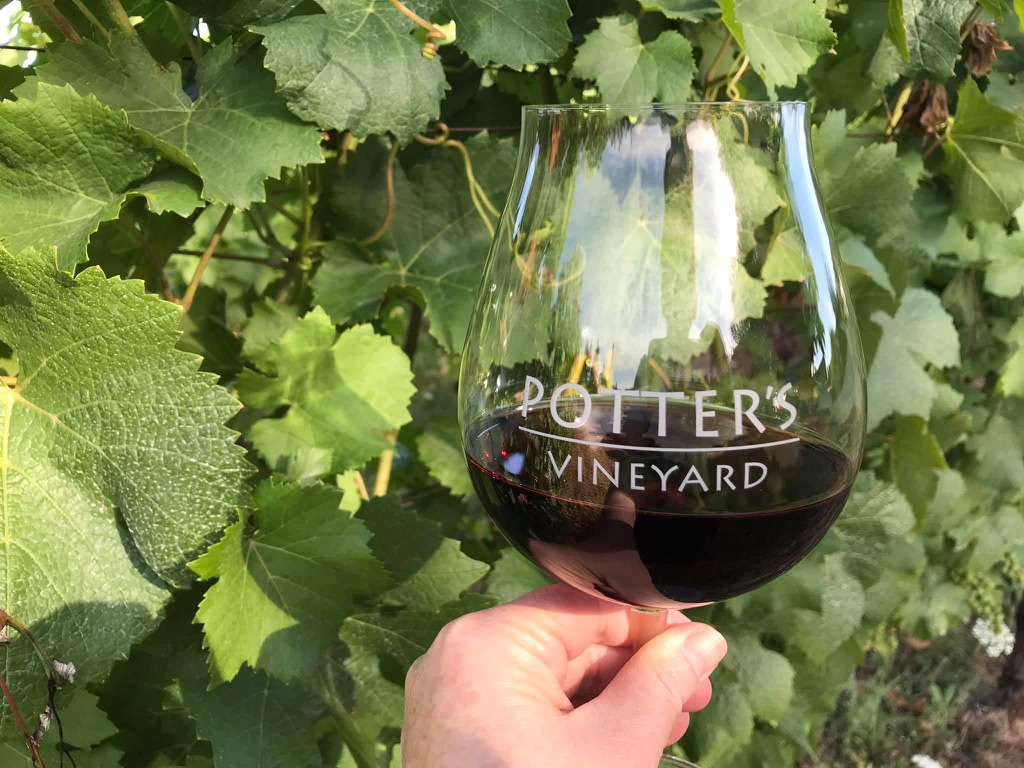 Potter's Vineyard logo glass with red wine